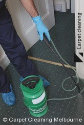 Melbourne Steam Carpet Cleaners 3000